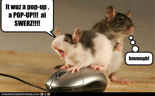 caught excuse hmph i swear mice pop up ads - 6340331520