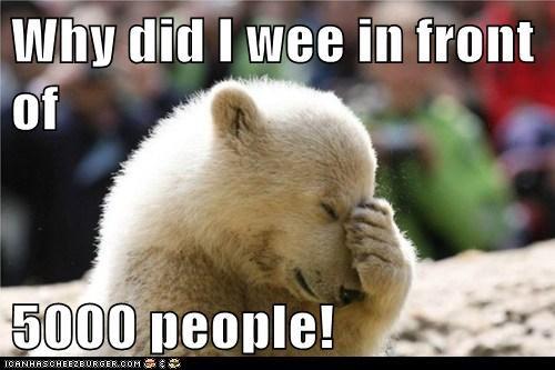 embarrassment facepalm internet mistake polar bear public regrets zoo - 6340360960