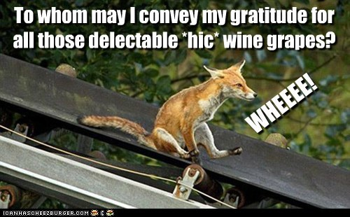 To whom may I convey my gratitude for all those delectable *hic* wine grapes? WHEEEE!