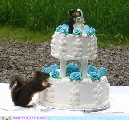 squirrel wedding cake wedding cake snack - 6340393984