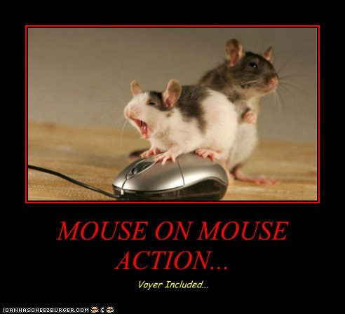 MOUSE ON MOUSE ACTION... Voyer Included...