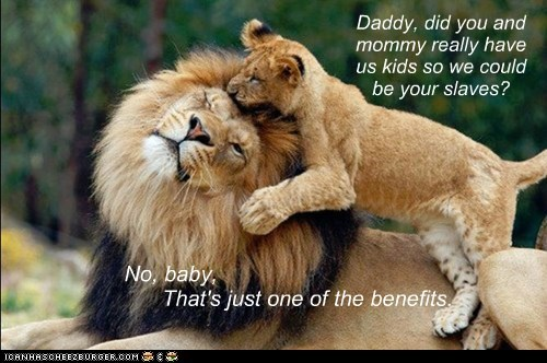Daddy, did you and mommy really have us kids so we could be your slaves? No, baby, That's just one of the benefits.