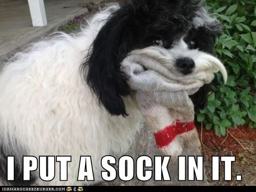 I PUT A SOCK IN IT.