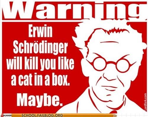 maybe maybe dead quantum mechanics schrodingers-cat - 6341088768