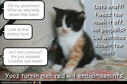 Oh my goodness! What an adorable, sweet little babe! Isn't she precious? We just adopted Cuddles last week! Yooz turnin meh red wif embairissmints! Dats enuff! Pweez tew nawk it off, kai peepulls? Luk wutchoo doowin tew meh! Look at that darling face! Squee!
