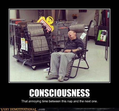 chair consciousness hilarious store - 6341808128
