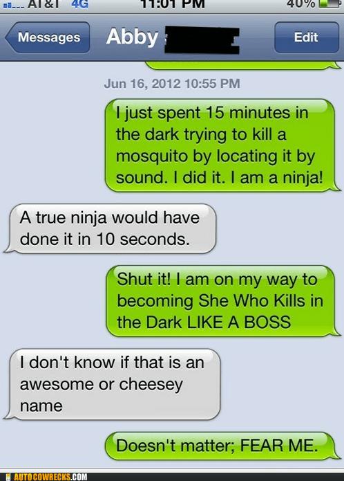 killing in the dark Like a Boss mosquito ninjas - 6342346240