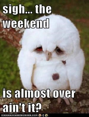 sigh... the weekend is almost over ain't it?