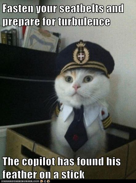 Captain Kitteh - 6342724864