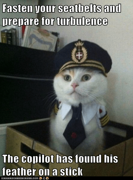 Captain Kitteh - 6342724864