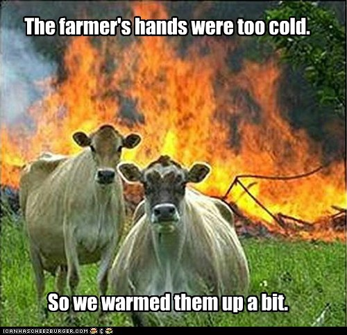 arson,burning,cold,cows,evil,evil cows,farmers,fire,hands,Memes,overkill