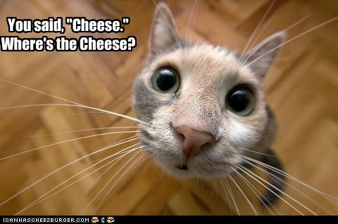 best of the week cheese close up fisheye photography picture - 6343064064