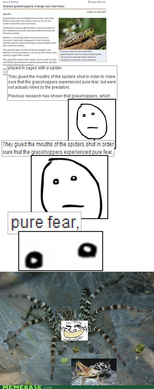 grasshoppers,poker face,Rage Comics,spiders