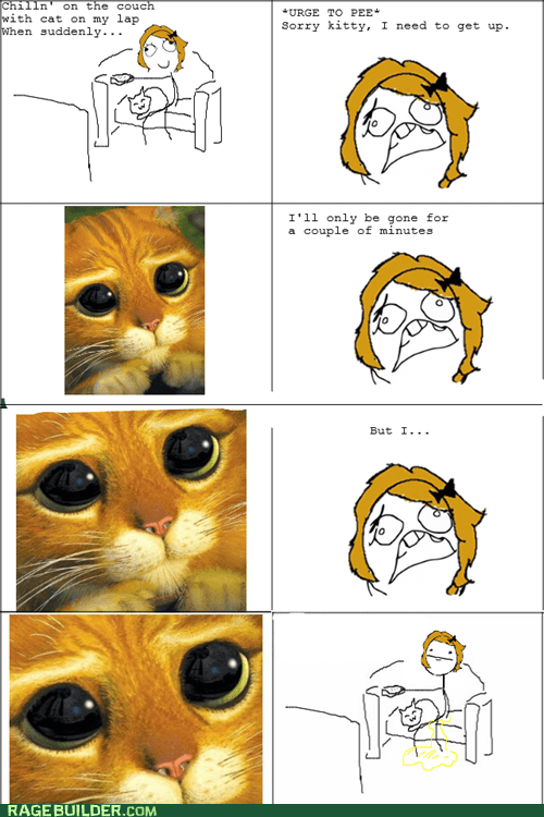 cat peetimes poker face Rage Comics - 6344253440