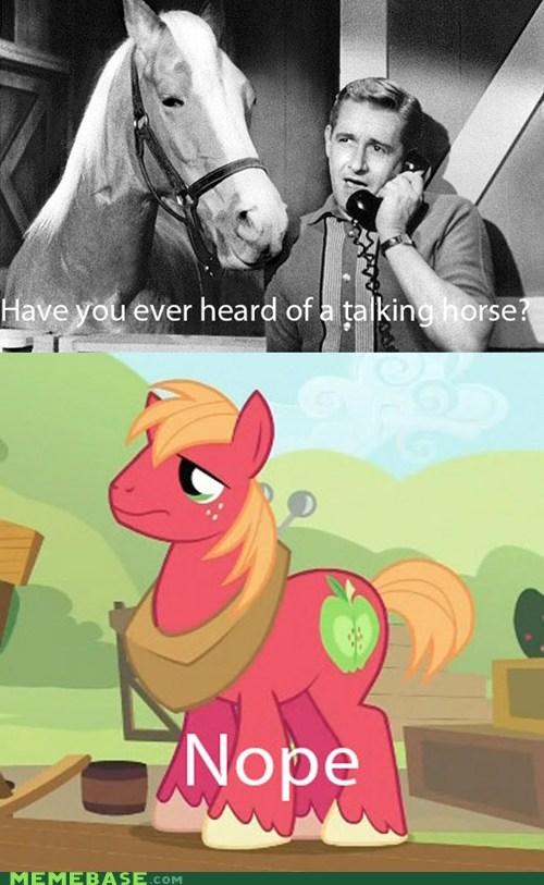 comics eeyup horse nope talking - 6344483072