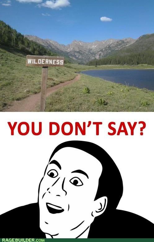 you dont say,wilderness
