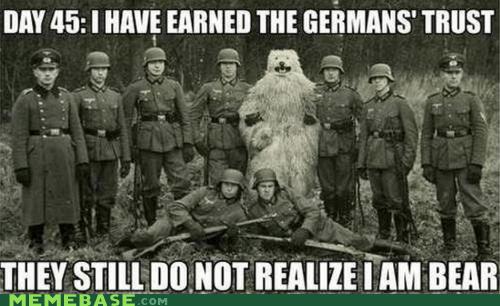 bear Germany Memes trust - 6345029120