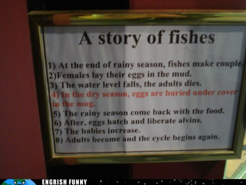 alvins,liberated,story of fishes