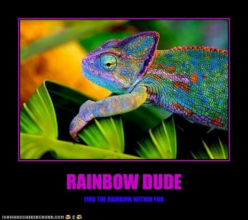RAINBOW DUDE FIND THE RAINBOW WITHIN YOU
