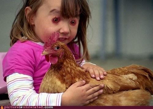 Chicken - Apictureis unrelated.com