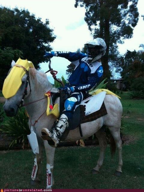 horse,motorcycle,vroom vroom,wtf