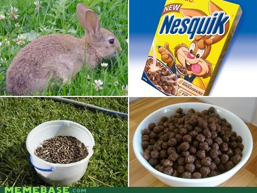 cereal,rabbit,so progressive,poops,nesquik,poop for BREAKFAST,Memes