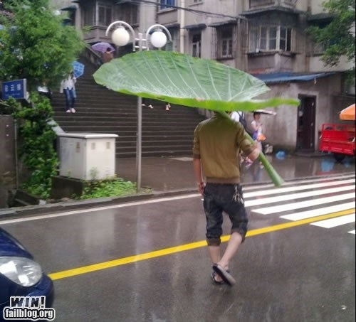 clever,DIY,leaf,umbrella