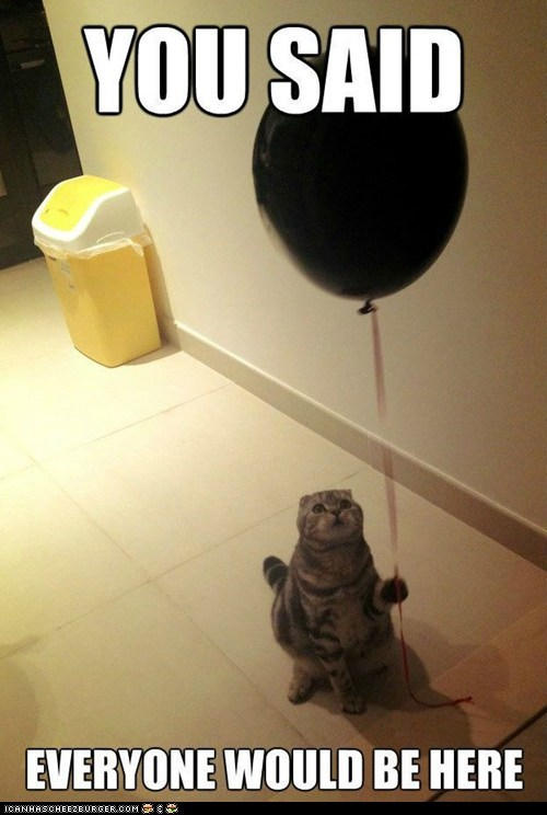 alone Balloons birthdays Cats lies lolcats lonely parties Sad - 6346089216
