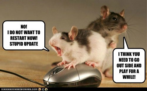 angry calm down captions computer frustration mice outside rodents windows - 6346151936