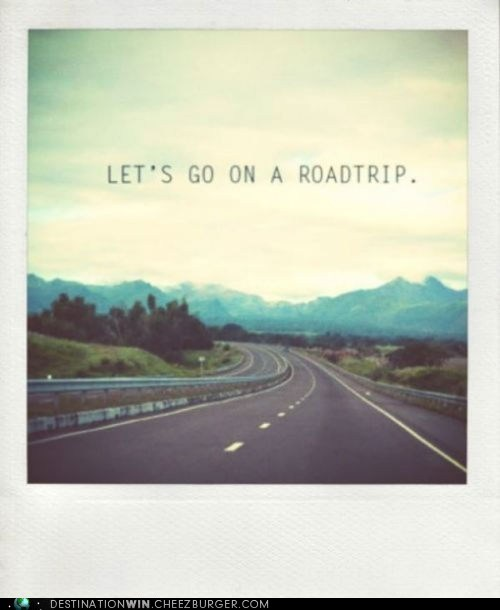 cars,driving,road trip,transportation