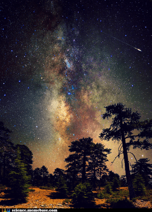 Astronomy,comet,Forest,milky way,sky,stars