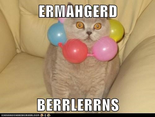 Balloons,best of week,cat,derp,Ermahgerd