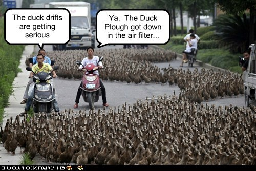 The duck drifts are getting serious Ya. The Duck Plough got down in the air filter...