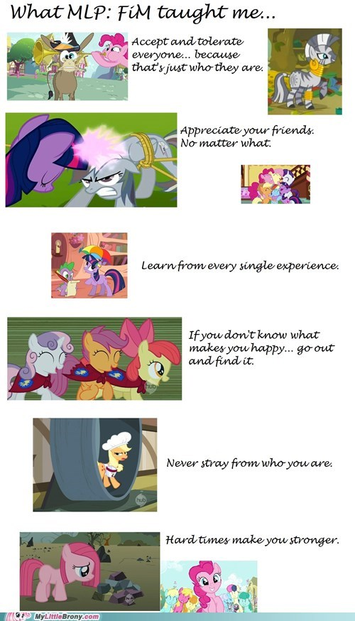 best of week Bronies friendship lesson my little pony TV - 6346711296