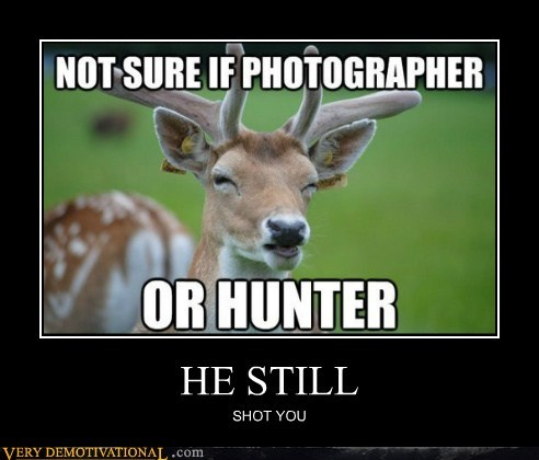 deer hilarious hunter photographer shot