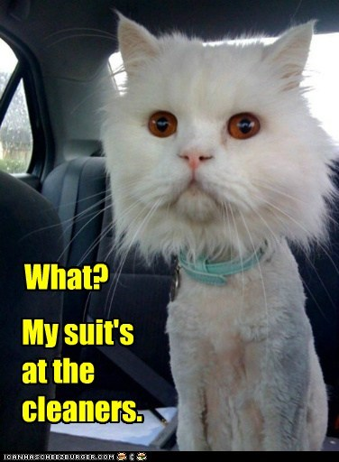 My suit's at the cleaners. What?