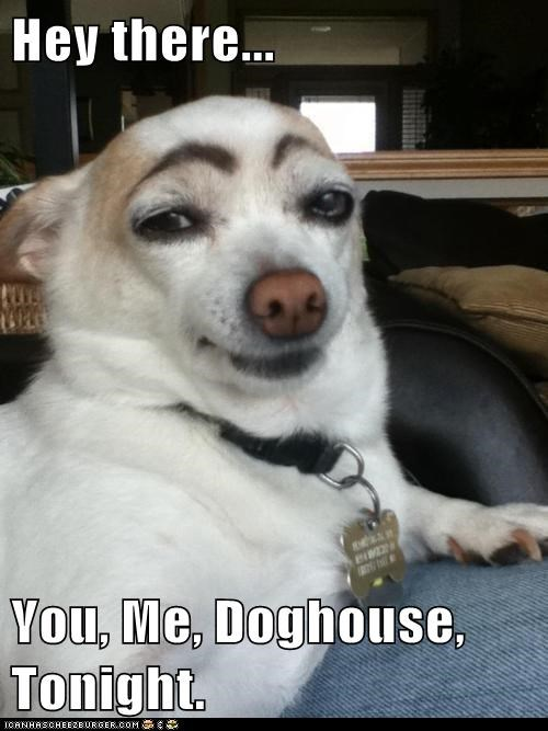 best of week derp eyebrows goggie smooth - 6347206912