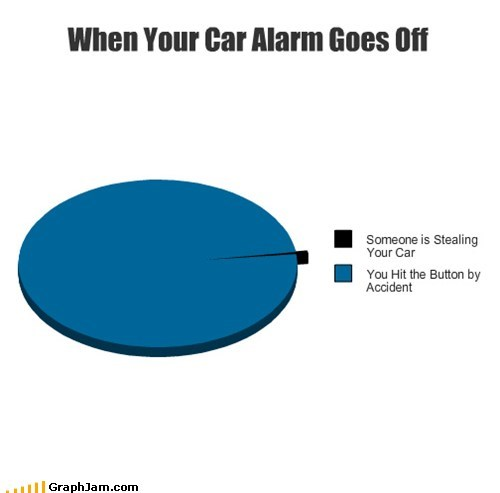 car alarms,panic,Pie Chart,stealing