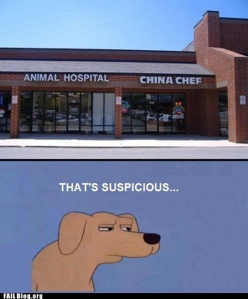 animal hospital china chef dogs fail nation Hall of Fame thats-suspicious - 6348259840