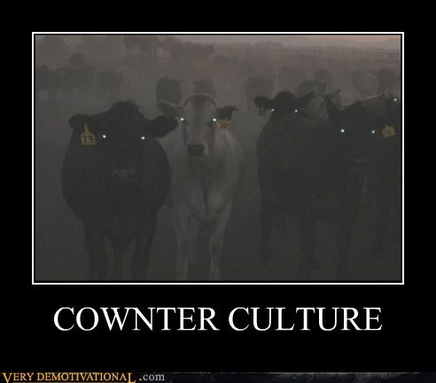 counter culture,cow,evil,hilarious,pun