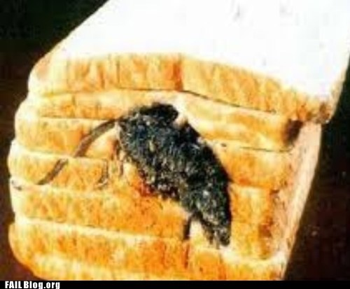 fail nation gross Hall of Fame rat rodent sliced bread - 6348356352