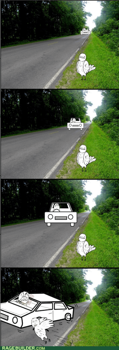 birds,cars,driving,Rage Comics