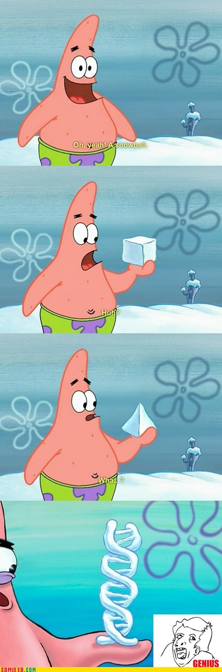cartoons,genius,patrick star,snowball,SpongeBob SquarePants