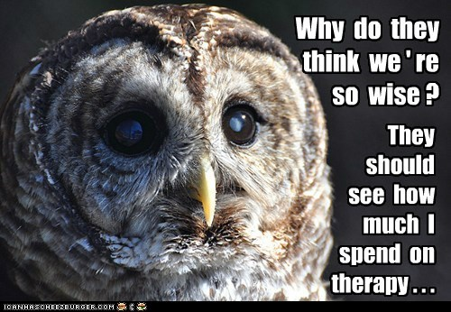 money Owl stressed therapy why wise - 6348607744