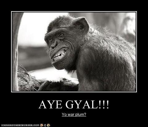 AYE GYAL!!! Yo war plum?