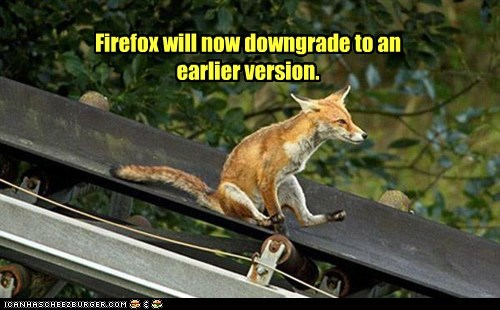 captions downgrade earlier fast firefox fox foxes fun slide slides sliding - 6348887808