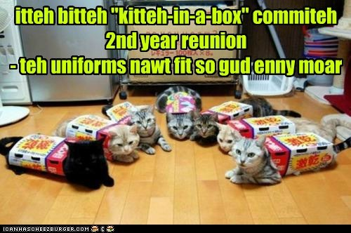 "itteh bitteh ""kitteh-in-a-box"" commiteh 2nd year reunion - teh uniforms nawt fit so gud enny moar"