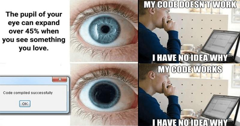 Funny programming memes.