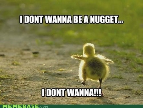chick duck Memes nugget run - 6349840384