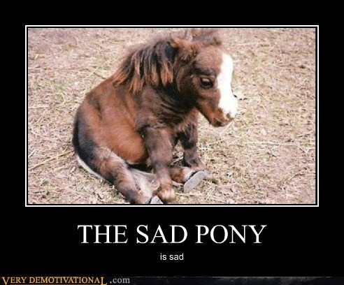 baby cute pony Sad - 6350157056